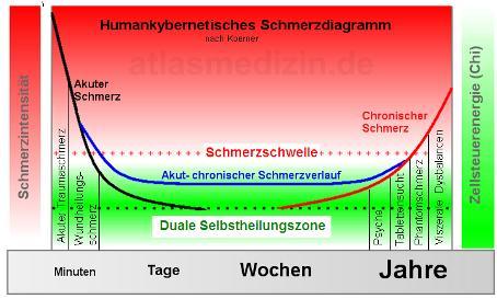 Humankybernetisches Schmerzdiagramm